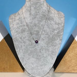 Swarovski Jewelry - Swarovski February Necklace